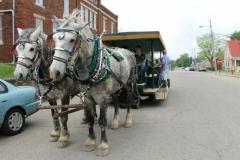 2R-Brookville-Horses